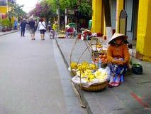 vietnam Arkivbild