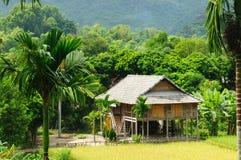 Vietnam - cena rural foto de stock