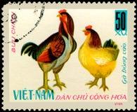 VIETNAM - CIRCA 1968: de postzegel in Vietnam wordt gedrukt toont haan en kip, een reeks van binnenlandse kip die Stock Fotografie