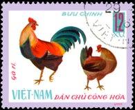 VIETNAM - CIRCA 1968: de postzegel in Vietnam wordt gedrukt toont haan en kip, een reeks van binnenlandse kip die Stock Foto