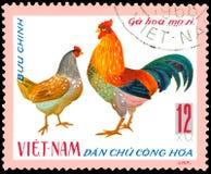 VIETNAM - CIRCA 1968: die Briefmarke, die in Vietnam gedruckt wird, zeigt Hahn und Henne, eine Reihe einheimisches Geflügel lizenzfreie abbildung