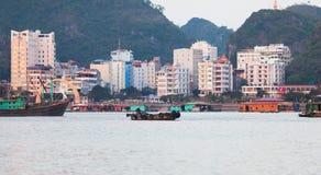 vietnam Città dell'isola di sedere del gatto nella baia di lunghezza dell'ha Fotografia Stock Libera da Diritti