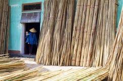 Vietnam, in de werf van een huis in Xuan Lai Bamboo Villiage Stock Foto's