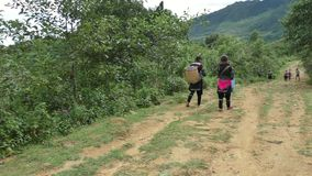 Vietnam ethnic women walk in Sapa, Vietnam Highlands stock footage