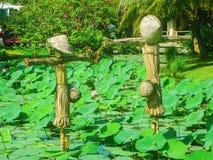 Vietnam fågelskrämma med lotusblommablommor, Vietnam royaltyfri foto