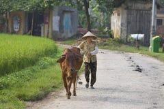 Vietnam Farmer Stock Image