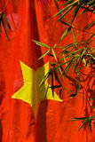 Vietnam Flag. Bamboo leaves in front of Vietnam flag royalty free stock photos