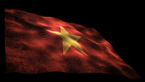 Vietnam flag stock video