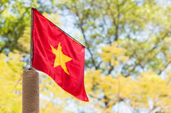 Vietnam Flag. In Tet holiday stock photo