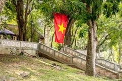 Vietnam flagga i botanisk trädgård Arkivbild