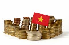 Vietnam flagga med bunten av pengarmynt Royaltyfri Foto