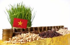 Vietnam flagga som vinkar med bunten av pengarmynt och högar av vete Arkivbilder