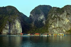 Vietnam - Ha Long Bay -large fish farm. Ha Long Bay - large fish farm with limestone karsts in the background - calm sea - colourful houses - popular travel royalty free stock photography