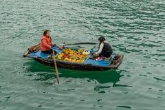 Vietnam - Halong Bay Stock Image