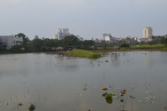 Urban lake. Beautiful suburb in Hanoi with an amazing lake and many towers in the background royalty free stock photos