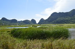 Vietnam landscape. Amazing landscape on an island near the Halong bay stock image