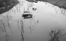 Vietnam landscape, floating house, tree reflect Stock Photography