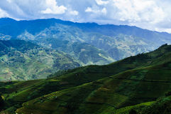 Vietnam landscape: Rice Terraces at Mu Cang Chai, Yen Bai, Viet Nam stock photo
