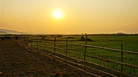 Vietnam-Landschaft bei Sonnenuntergang, Sonne, Bambuszaun Stockfotografie