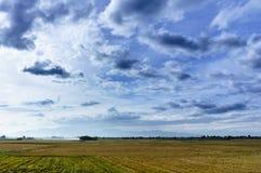 Vietnam landskap: Fältet efter skörd under molnig himmel-Binh Thuan, Vietnam Arkivbilder