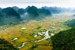 Vietnam landskap: Risfält med en flod i dalen av för folk-Bac för etnisk minoritet för TAY sonen-Viet Nam son-Lang Arkivfoton