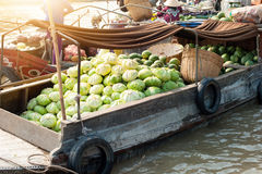 Vietnam, Mekong river delta Royalty Free Stock Photos