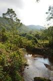 Vietnam - min son - flod på min sonfristad Royaltyfri Bild