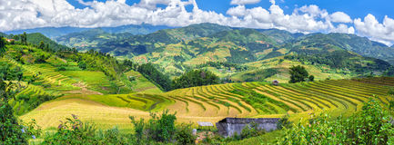 Vietnam northwestern mountains and terraced rice paddies truly majestic Royalty Free Stock Image