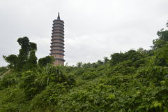 Tropical pagoda. Vietnam's highest pagoda and many tropical green plants royalty free stock photo