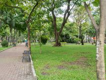 Vietnam-Park mit Bäumen Lizenzfreie Stockfotografie