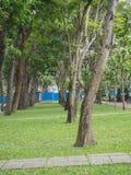 Vietnam-Park mit vielen Bäumen Lizenzfreies Stockfoto