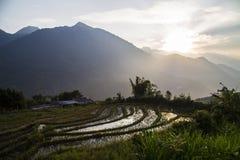 Vietnam risfältlandskap Arkivfoto