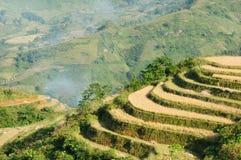 VIetnam - rural scene Stock Photo
