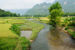 VIetnam - rural scene Royalty Free Stock Images