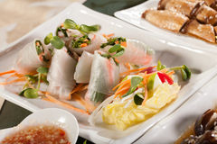 Vietnam springroll. Vegetable covered large size Vietnam noodle with sauce Stock Photography