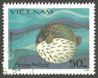 Fish  Soles and Flatfish. Vietnam - stamp 1984, Multicolor Edition Marine Fauna, Series Fish  Soles and Flatfish, Spot fin Porcupinefish, Diodon hystrix Stock Photos