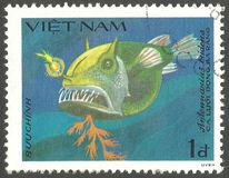 Striated Frogfish, Antennarius tridens. Vietnam - stamp 1984, Multicolor Edition Marine Fauna, Series Fish Soles and Flatfish, Striated Frogfish, Antennarius royalty free stock images
