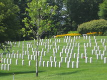Vietnam Veterans Memorial Cemetery. The Vietnam Veterans Memorial Cemetery is located in Randolph,Vermont.It is rows of headstones bearing the names of those who Royalty Free Stock Images