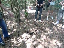 Vietnam War Ho Chi Minh Military Tunnel Cu Chi Tunnels Soldiers Base Camp Hidden Ground