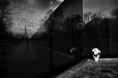 Vietnam War Memorial in Washington DC Royalty Free Stock Photography