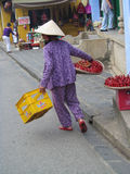 Vietnam woman sell fruits on the street Royalty Free Stock Photos