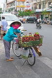 Vietnam woman selling Rambutan Royalty Free Stock Photo