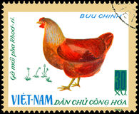 VIETNAME - CERCA DE 1968: o selo postal impresso em Vietname mostra a galinha, uma série de galinha doméstica Foto de Stock