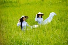 Vietname, mulheres bonitas fotografia de stock royalty free