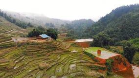 Vietname, Pa do Sa, campos do arroz na n?voa Vista superior, vista a?rea Paisagem natural bonita de 3Sudeste Asi?tico filme
