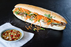 Vietnamees Varkensvlees Banh Mi Sandwich met Koriander en wortel het sluiten Royalty-vrije Stock Afbeelding