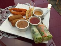 Vietnamese Appetizer Plate. With salad rolls, fried shrimp, egg rolls, pot stickers, dipping sauces Stock Photography