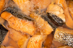 Vietnamese caramelized and simmered salmon Royalty Free Stock Photography