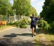 Vietnamese, carry,  grass basket Stock Image