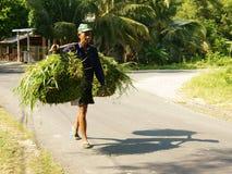 Vietnamese, carry,  grass basket Royalty Free Stock Image